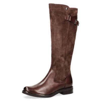 Knee high brown boots by Caprice
